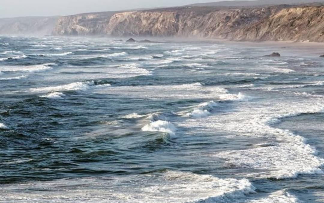 Die 9 wichtigsten Argumente der Doku Seaspiracy